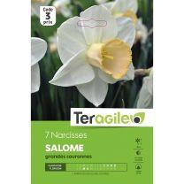 7 Narcisses Salome Grandes Couronnes