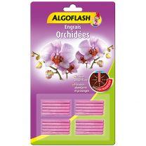 Algo Bâtonnet Orchidée x20