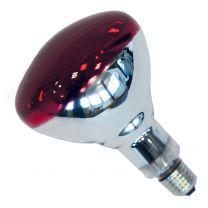 Ampoule Thermique Rouge Philips 250W