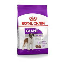 Croquettes Chien Royal Canin GIANT Adult
