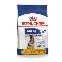 Croquettes Chien Royal Canin MAXI Adult 5+15KG+3KG Offerts