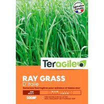 Mélange de Graines de Gazon Ray Grass Italien