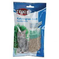 Sachet semence herbe a chat