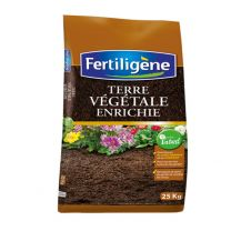 Terre Végétale Enrichie Fertiligène 20KG