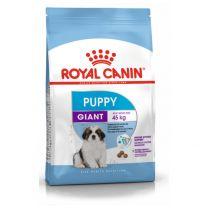 Croquettes pour Chiot -8 mois de Très Grande Race Royal Canin
