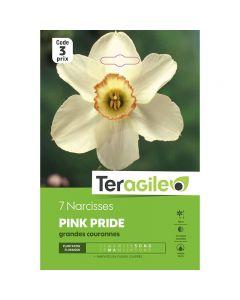pointvert-est-7-narcisses-pink-pride-teragile-ve3945_1.jpg