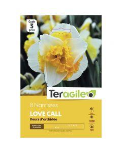 pointvert-est-8-narcisses-love-call-fleurs-dorchidee-teragile-ve3972_1.jpg