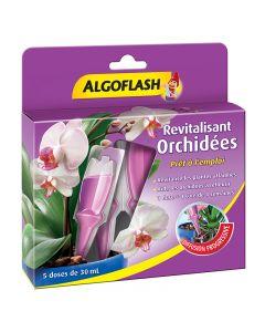 pointvert-est-algo-revitalisant-orchidee-x5-ju5965_1.jpg