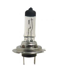 pointvert-est-ampoule-h7-12v-55w-rh1429_1.jpg