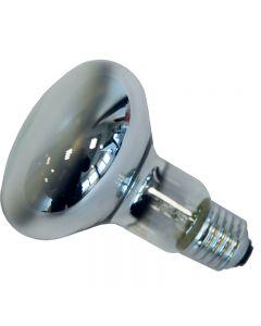 pointvert-est-ampoule-soft-100w-vis-blanc-ag6202_1.jpg