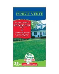 pointvert-est-engrais-pelouse-3en1-25kg-jf1075_1.jpg