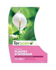 pointvert-est-engrais-plante-dinterieur-teragile-1l-ju0825_1.jpg