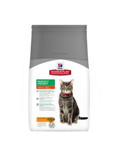 pointvert-est-feline-perfect-weight-15kg-ac1191_1.jpg