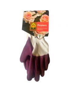 pointvert-est-gant-rosier-violet-t6-hc1075_1.jpg