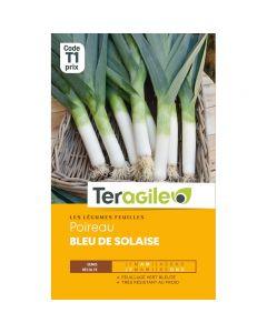pointvert-est-graines-teragile-de-poireau-bleu-de-solaise-ja2234_1.jpg