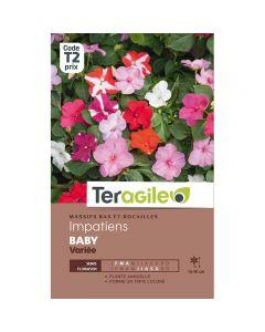 pointvert-est-graines-teragile-impatiens-baby-variee--ja1658_1.jpg