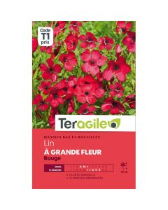 pointvert-est-graines-teragile-lin-a-grande-fleur-rouge--ja1666_1.jpg