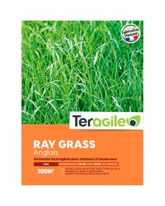 pointvert-est-melange-pour-prairie-ray-grass-anglais-boite-3kg-ja0802_1.jpg