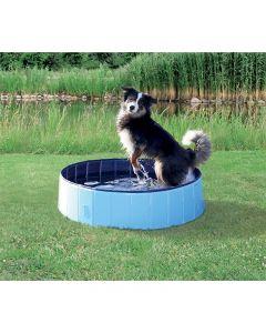pointvert-est-piscine-chien-80x20-ak1503_1.jpg