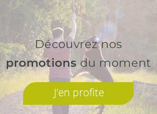 Nos promotions du moment
